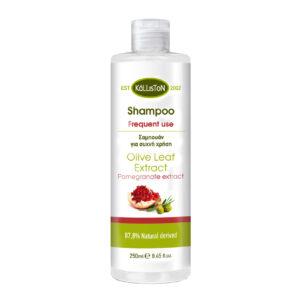 00031.01 Kalliston shampoo for frequent use 250ml.